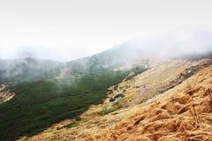 Mist, regen in de bergen, in de bergen Royalty-vrije Stock Afbeelding