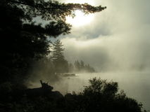 Mist rising from lake royalty free stock photos