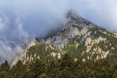 Mist rising in mountains Royalty Free Stock Photography
