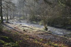 Mist rising from River Tone. On a frosty winter morning, Wiveliscombe, Somerset Stock Images
