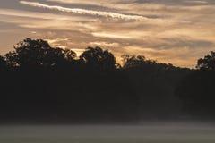 The mist rising on Southampton Common stock photos