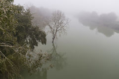 Mist on the river Royalty Free Stock Photo