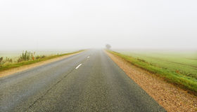 Mist on a road. Stock Photos