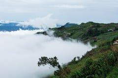 Mist runt om kullar Arkivbilder