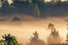 Mist scenic landscape. Of spring nature at dawn royalty free stock photography