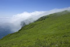 The mist from the sea to steal over grassy banks. Stock Photos