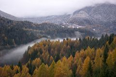 The mist shifted to the river bed in autumn Stock Photography