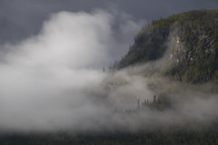 Mist shrouded the pine forest while the sun lights up the mountain slope. Rainy weather comes and goes in Sweden, giving this beautiful scenery, Kvikkjokk stock photo