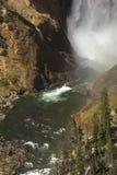 Mist som är längst ner av lägre nedgångar, Yellowstone River, Wyoming Arkivbilder