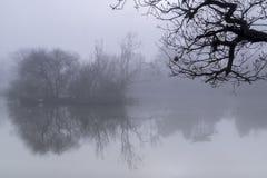 Mist on Southampton Common Royalty Free Stock Photo