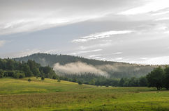 The mist Stock Photography