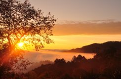 Mist and sun rise stock photography