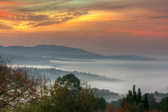 Mist in sunrise Stock Photos