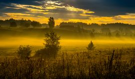 Mist at sunrise in rural countryside stock photo