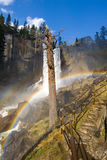 Mist Trail rainbows Stock Photo