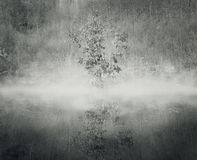 The mist. A tree in the mist with its reflection in the water and a forest on the background in black and white Royalty Free Stock Images