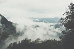 mist & wolk op berg in ochtend Mist op heuvel Stock Foto
