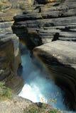 mistaya каньона Стоковое Фото