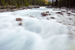 Mistaya Canyon. Banff National Park, Alberta, Canada Stock Photo