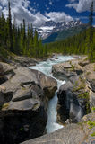 Mistaya Falls and Canyon. Mistaya Fall in the Canadian Rockies Stock Images