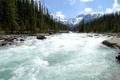 Mistaya kanjon, kanadensiska steniga berg, Kanada Arkivfoton