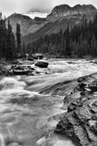 Mistaya River Banff National Park. Royalty Free Stock Photo