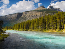 Mistaya River Banff National Park Stock Photos