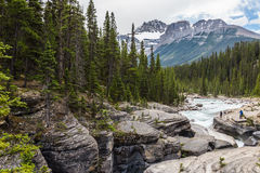 Mistaya River II. Mistaya River and forest view from the Canyon, Rocky Mountain submit with blue sky and white clouds. The Canadian Rockies have numerous high Royalty Free Stock Image