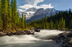 Mistaya River with mountain. Mistaya River in Jasper national park, slow shutter for the water silky movement, with rocky mountain as background Royalty Free Stock Images
