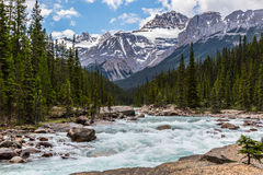 Mistaya River and a Peak in the background Stock Image