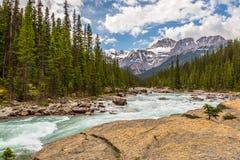 Mistaya szczyty i rzeka Zdjęcia Royalty Free