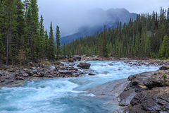 Mistayacanion, Alberta, Canada Royalty-vrije Stock Foto