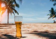 Misted杯在沙子的冰镇啤酒在绿色棕榈树、蓝天和沿海热带海岛背景  图库摄影