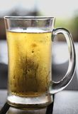 Misted with beer mug Stock Photography