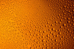 misted glass of beer close up an orange bright background Stock Photos