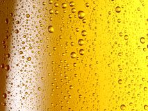 Misted glass of beer. Close up shot Royalty Free Stock Images