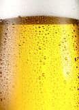Misted glass of beer. Royalty Free Stock Photography