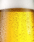 Misted glass of beer. Royalty Free Stock Image