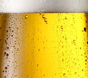 Misted glass of beer. Royalty Free Stock Images