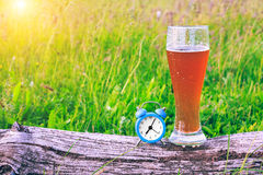 Misted glass of cold beer and an alarm clock at the background of green grass at sunset. Time to take a break and drink beer. Royalty Free Stock Image