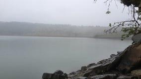 Misted sjö Arkivbilder