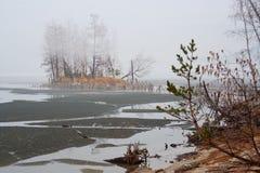 Misten över vattnet längs sjön nära en skog för sörjaträd Royaltyfri Bild