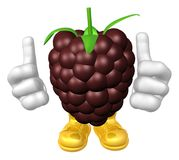 Mister fruit character Royalty Free Stock Photos