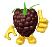 Mister fruit character Royalty Free Stock Image