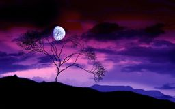 misteriosa luna Стоковое Фото