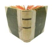 Misterioso viejo del libro Fotografía de archivo