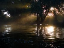 Mistero di delta di Danubio Fotografia Stock