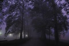 Mistery path Royalty Free Stock Photos