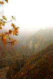 mistic горы Стоковые Фотографии RF