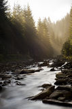 Mistic River Royalty Free Stock Image